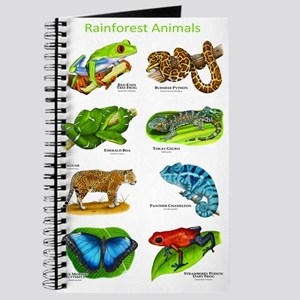 Rainforest Animals Journal