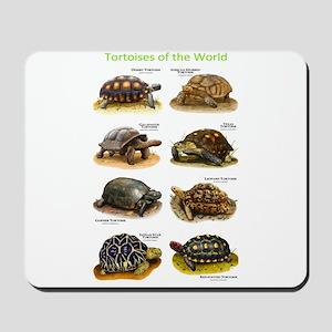 Tortoises of the World Mousepad