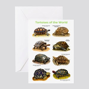 Tortoises of the World Greeting Card