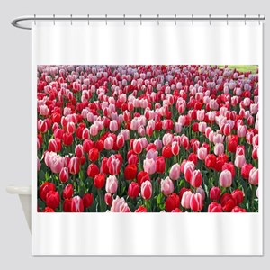 Red & Pink Tulips Holland Netherlan Shower Curtain