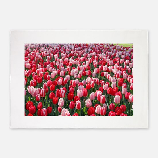 Red & Pink Tulips Holland Netherlan 5'x7'Area Rug