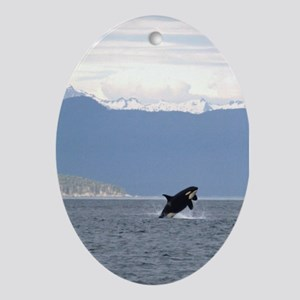 Ornament-Whale (Orca)