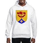 Dauid's Hooded Sweatshirt