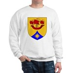 Dauid's Sweatshirt