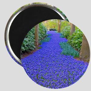 Grape Hyacinth Path Magnets