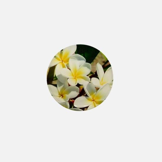 Frangipani/Plumeria Flowers Mini Button