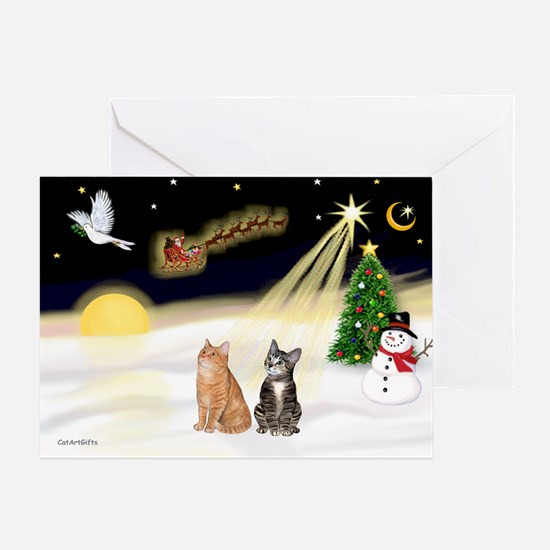 Night Flight-2 Tabbys Greeting Card