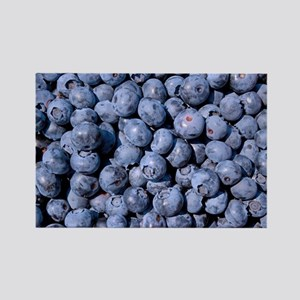 Blueberry Rectangle Magnet