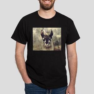 """Llama """"Lil Bit"""" Black T-Shirt"""