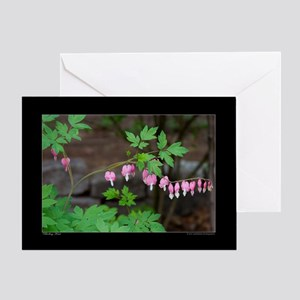 Bleeding Heart Flower Greeting Card