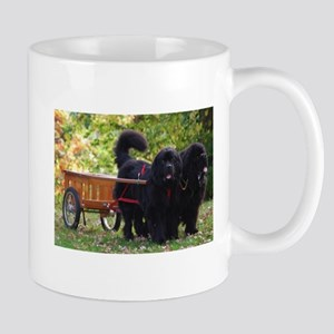 Newfie Draft Shop Mug