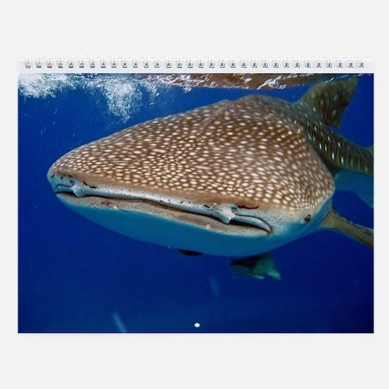 Dive Photos Wall Calendar
