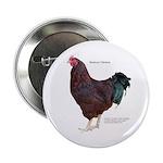 """Buckeye Chicken 2.25"""" Button"""
