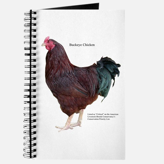 Buckeye Chicken Journal