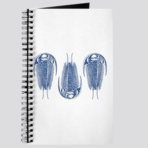 Trilobite Journal