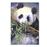 Panda Postcards (Package of 8)