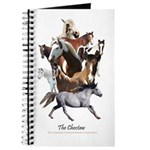 Choctaw Horse Journal