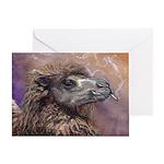 Camel Greeting Card