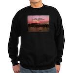a moment to reflect Sweatshirt (dark)