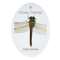 Green Darner Dragonfly Ornament (Oval)
