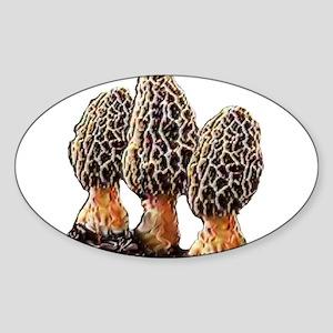 Morel Dreams Sticker (Oval)