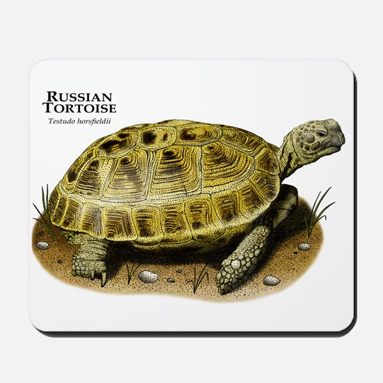 Russian Tortoise Mousepad