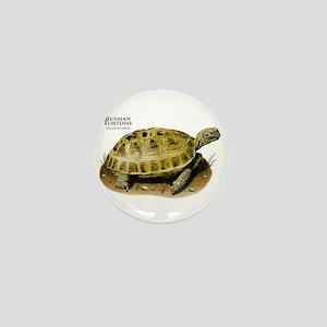 Russian Tortoise Mini Button