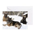 Howling Winds Greeting Cards (Pk of 10) :group