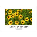 Large Poster Summer Sunflowers