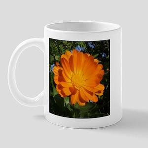 Orange Calendula Daisy Mug