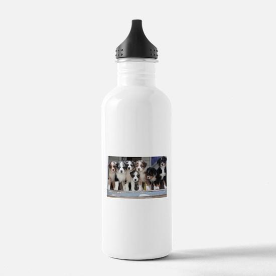 7 Hearts of Love Water Bottle