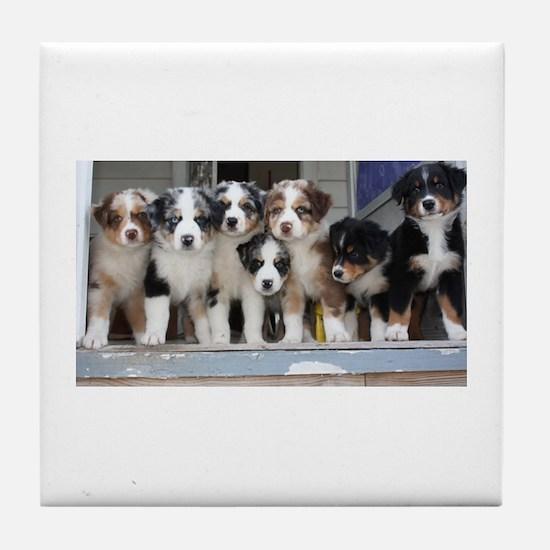 7 Hearts of Love Tile Coaster