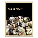 Full of Fiber! (Black) Small Poster
