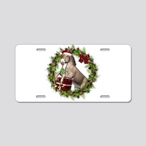 christmas donkey wearing sa aluminum license plate