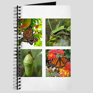 Monarch Journal