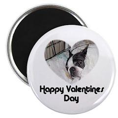 HAPPY VALENTINES DAY (BOSTON TERRIER) Magnet
