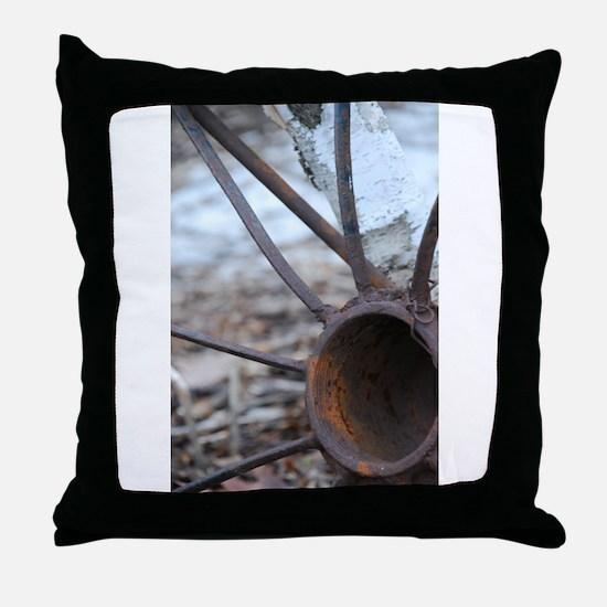 Gil Warzecha Throw Pillow