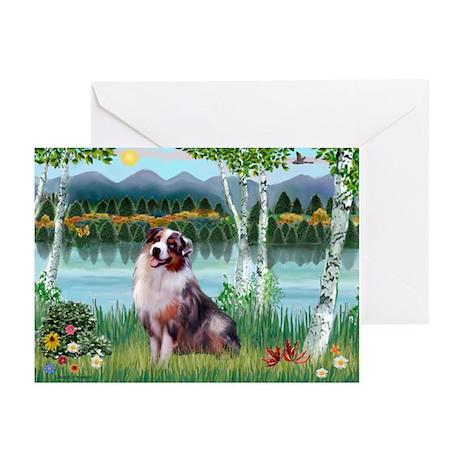 Birches/Aussie Shep 1 Greeting Cards (Pk of 10)
