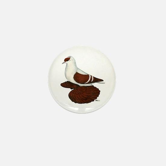 Red Fullhead Swallow Pigeon Mini Button