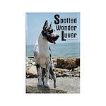 Spotty Boy Sonny's Rectangle Magnet (10 pack)