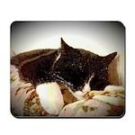 Catnap Mousepad