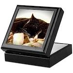 Catnap Keepsake Box