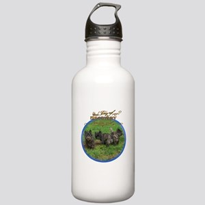 Cairn Terrier Discover Stainless Water Bottle 1.0L