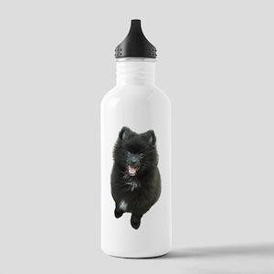 Adorable Black Pomeranian Puppy Dog Water Bot Stai