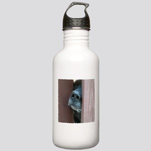 The Nose Knows Stainless Water Bottle 1.0L