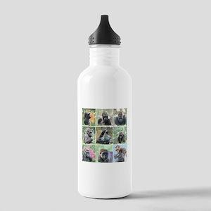 Gorilla family Stainless Water Bottle 1.0L