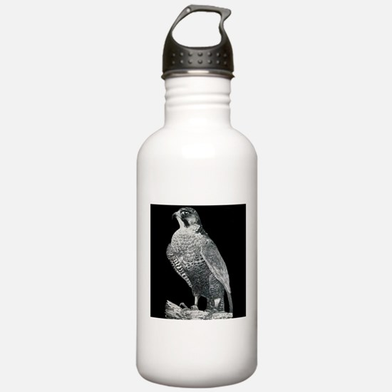 Peregrine Falcon Water Bottle