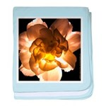 White Carnation Infant Blanket