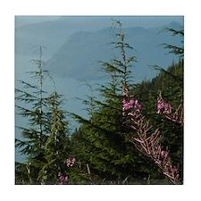 Cypress Mountain BC Tile Coaster