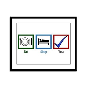 Eat Sleep Vote Framed Panel Print